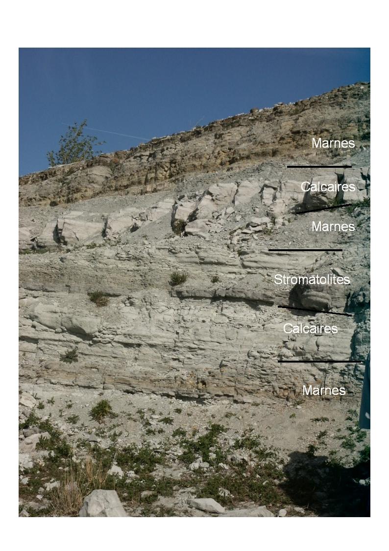 Dans La Carriere Du Grand Gandaillat Plusieurs Strates Ont Ete Observees Ce Sont Des Roches Sedimentaires Qui Se Formees Un Lac